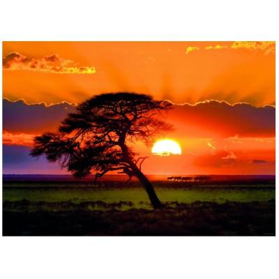 Puzzle Heye-29689 Norbert Becke: Sunny Tree