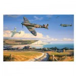 Puzzle  Gibsons-G3085 Nicolas Trudgian: Summer for Heroes