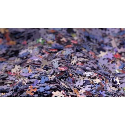 Puzzle PuzzelMan-656 Königspaar - Willem-Alexander und Maxima der Niederlande