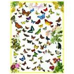 Puzzle  Eurographics-6000-0077 Schmetterlinge