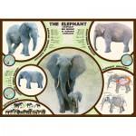 Puzzle  Eurographics-6000-0241 Der Elefant