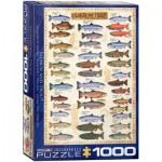 Puzzle  Eurographics-6000-0311 Der Lachs und die Forelle
