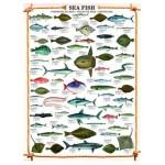 Puzzle  Eurographics-6000-0313 Die Fische