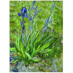 Puzzle  Eurographics-6000-0380 Van Gogh Vincent: Die Iris