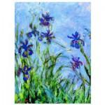 Puzzle  Eurographics-6000-2034 Claude Monet: Iris (Detail)