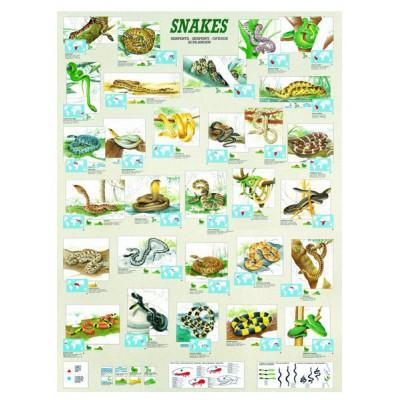 Puzzle Eurographics-6000-2610 Schlangen