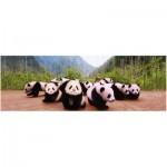 Puzzle  Eurographics-6005-0309 Pandababies