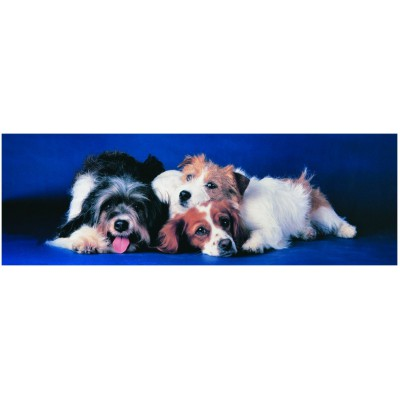Puzzle Eurographics-6005-4491 Hunde