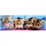 Puzzle  Eurographics-6005-4678 Kätzchen unter der Decke