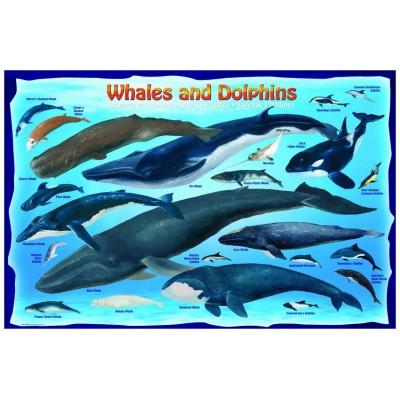 Puzzle Eurographics-6100-0082 Wale und Delphine