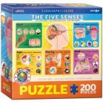 Puzzle  Eurographics-6200-0305 Die fünf Sinne