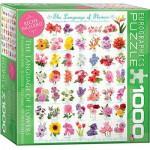 Puzzle  Eurographics-8000-0579 Die Sprache der Blumen