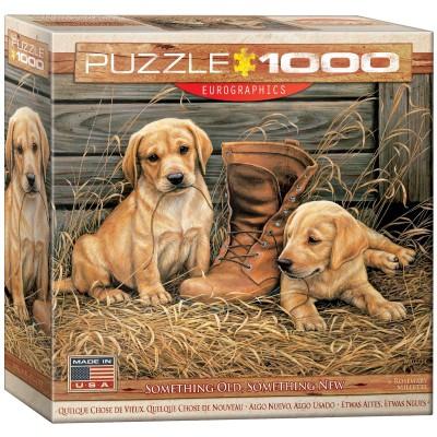 Puzzle Eurographics-8000-0795 Etwas Altes, Etwas Neues