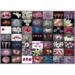 Puzzle   Blumengruß