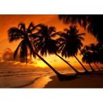 Puzzle  Schmidt-Spiele-58193 Tropisches Abendrot