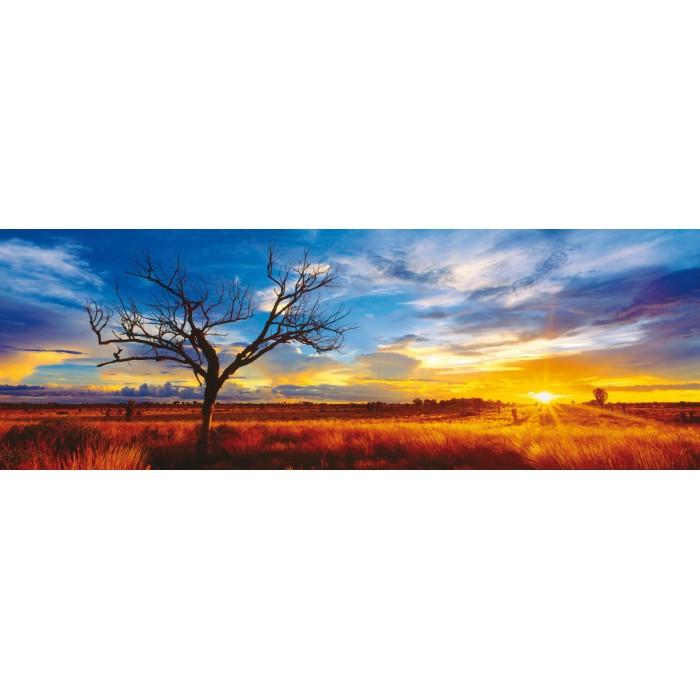 Mark Gray: Australien, Oak Wüste im Sonnenuntergang