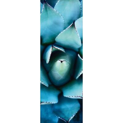 Puzzle Schmidt-Spiele-59329 Alan Shapiro, Blaue Echeveria