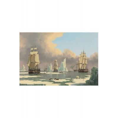 Puzzle-Michele-Wilson-A283-750 Puzzle aus handgefertigten Holzteilen - John Ward: The