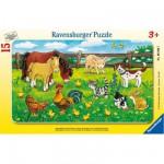 Ravensburger-06046 Rahmenpuzzle - Bauernhoftiere auf der Weide