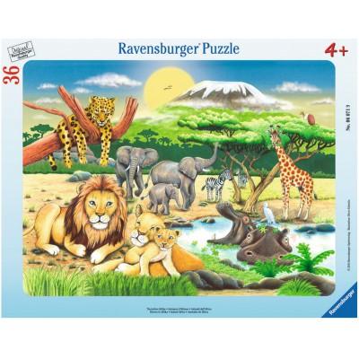 Ravensburger-06071 Rahmenpuzzle - Tierisches Afrika