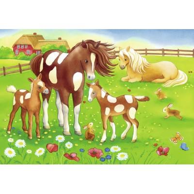 Puzzle Ravensburger-08746 Niedliche Pferde