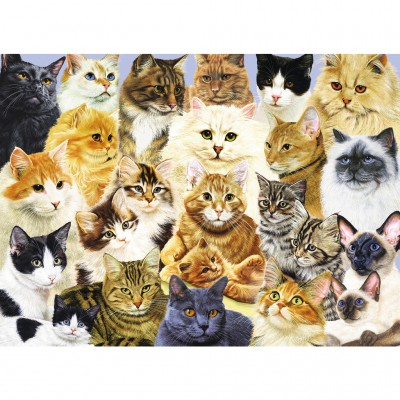 Puzzle Ravensburger-10527 Katzen hin und her