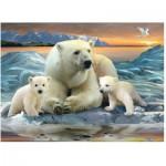 Puzzle  Ravensburger-12647 Polarbären