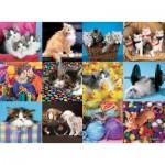 Puzzle  Ravensburger-13197 XXL Teile - Katzen Collage