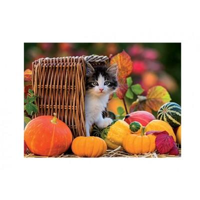 Puzzle Ravensburger-13603 Kätzchen im Herbst