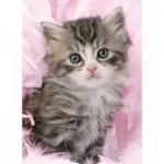 Puzzle  Ravensburger-14136 Süßes Kätzchen