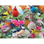 Puzzle  Ravensburger-14223 Garden Birds