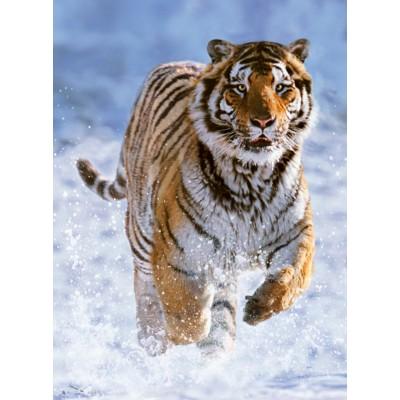 Puzzle Ravensburger-14475 Tiger im Schnee
