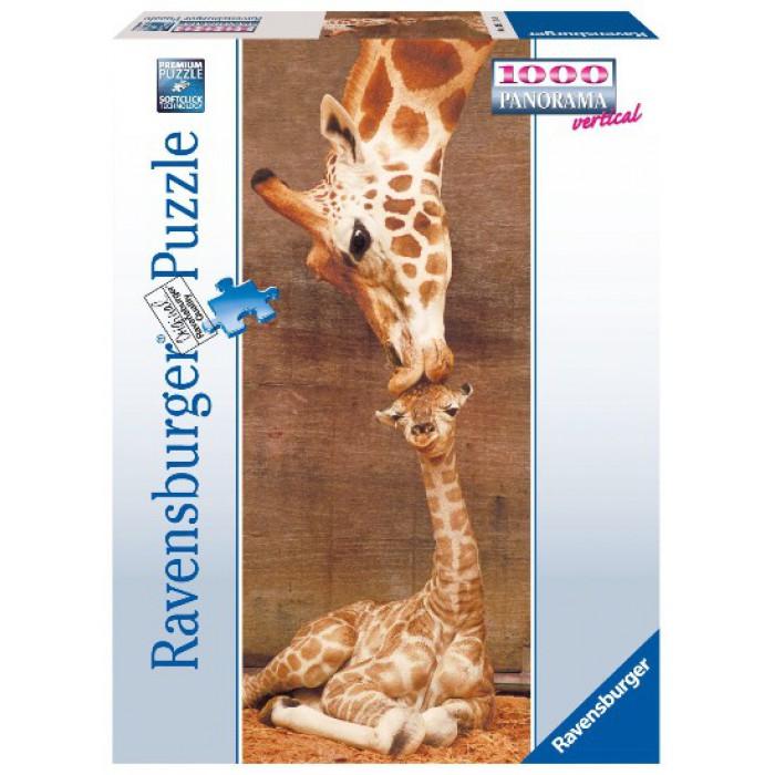 Giraffen: Der erste Kuss