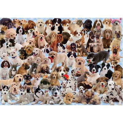 Puzzle Ravensburger-15633 Hunde Collage