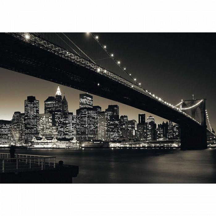 New York: Manhattan mit Brooklyn Bridge