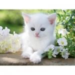 Puzzle  Ravensburger-16243 Weißes Kätzchen