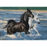 Puzzle  Ravensburger-16276 Pferde am Strand