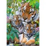 Puzzle  Ravensburger-19117 Tigerfamilie