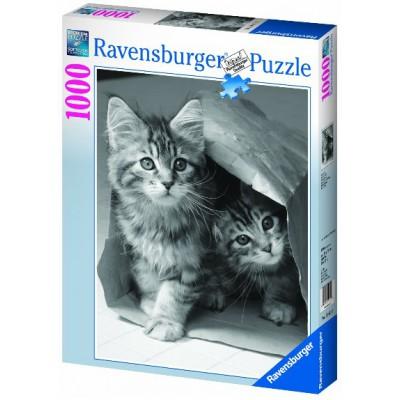 Puzzle Ravensburger-19411 Katze