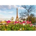 Puzzle  Ravensburger-19525 Eiffelturm und Tulpen