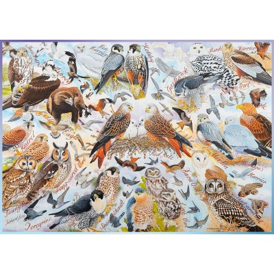 Puzzle Ravensburger-19559 Birds of Prey