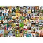 Puzzle  Ravensburger-19642 99 lustige Tiere