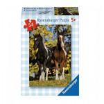 Ravensburger-73567-09450-09 Minipuzzle - 2 Fohlen