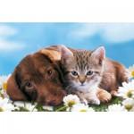 Ravensburger-94874-09430-04 Minipuzzle - Kätzchen und Welpe