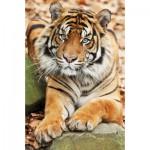 Ravensburger-94874-09430-07 Minipuzzle - Tiger