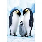 Ravensburger-94874-09430-09 Minipuzzle - Pinguine