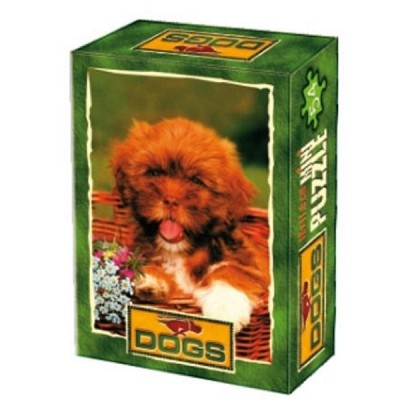 DToys-50199-DG01 Mini Puzzle - Im Warmen