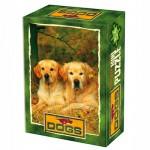 DToys-50199-DG03 Mini Puzzle - Schöne Landschaft !