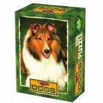 DToys-50199-DG04 Mini Puzzle - Bereit für den Spaziergang