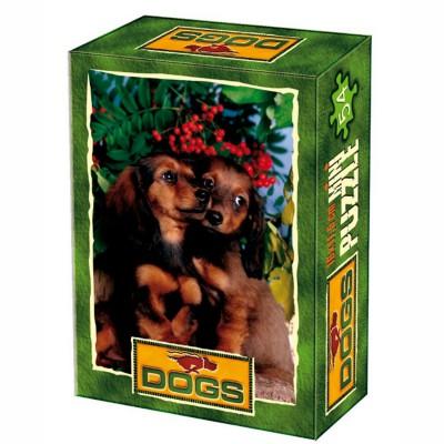 DToys-50199-DG05 Mini Puzzle - Zärtliche Freundschaft